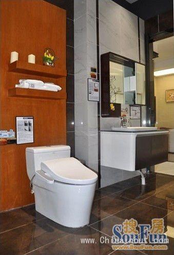 箭牌卫浴然•木系列智能座便器及浴室柜APGM10G4136-A