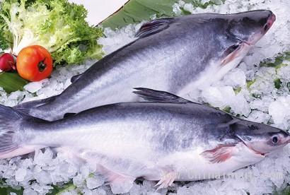 壁纸 动物 美食 肉 鱼 鱼类 410_276