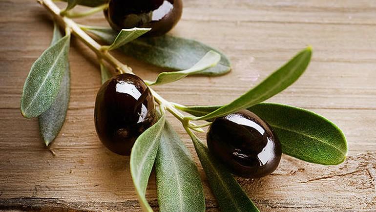 olive-for-life-olives