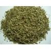 埃及百里香/麝香草 herb