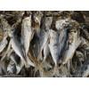 干海鮮 Dried Seafood