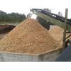 造纸用巴西松木木屑 wood chips