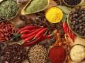 印度优质农产品 Agricultural Products (12)
