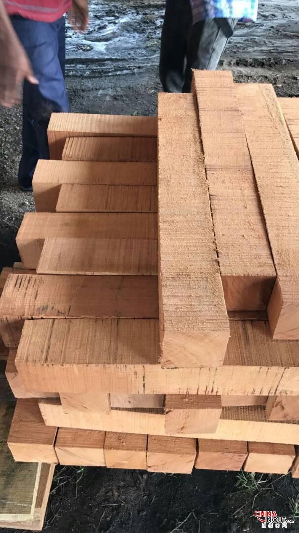 doussie wood4