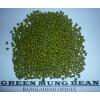 孟加拉国进口绿豆供应 mung beans