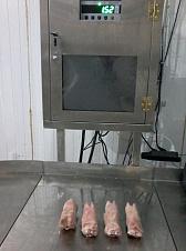 pork feet 7