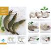 进口南美对虾 VANAMEI SHRIMP