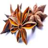 越南八角茴香供应(优质) STAR ANISE