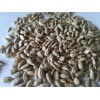 保加利亚进口食用级葵花籽 sunflower kernels