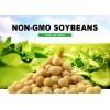 美國非轉基因大豆廠家供應 Non Gmo Soya