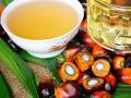 5月份中國進口食用植物油70.8萬噸