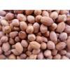 塞内加尔花生厂家批发供应 Peanuts