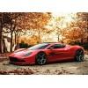意大利进口豪华轿车供应 Luxury Cars