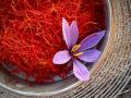 认识伊朗藏红花|伊朗西红花|伊朗番红花