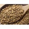 黎巴嫩進口葫蘆巴籽廠家供應批發Fenugreek seeds