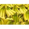 緬甸進口優質香蕉廠家批發供應 banana