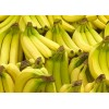 巴基斯坦進口優質香蕉廠家批發供應 banana
