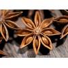 菲律宾进口八角|大茴香|八角茴香厂家供应批发 Aniseed