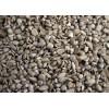 保加利亚99.99%葵花籽供应sunflowerkernel