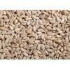 保加利亚优质葵花籽供应 sunflower kernel