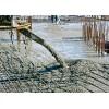 克罗地亚进口水泥产地厂家直供 Cement