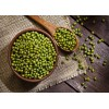 乌兹别克斯坦进口绿豆产地厂家直供 Mung Beans