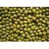 缅甸进口优质绿豆产地厂家直供 Mung Beans