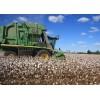 美国苹果彩票开奖结果大型采棉机厂家供应 Cotton Picker
