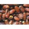 巴基斯坦进口椰枣干厂家直供 Date Palm