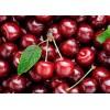 新西兰进口新鲜车厘子供应 Fresh Cherries