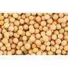 巴西转基因大豆现货可供