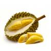求购进口泰国冷冻带核金枕榴莲肉 Thailand Frozen Monthong Durian Meat Wanted
