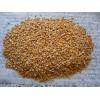 巴西进口非转基因玉米厂家供应商 Maize Corn
