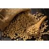 巴西大豆供应/巴西转基因大豆供应 Soybean GMO