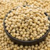 求购大豆 Soybeans Wanted
