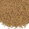 印度香菜籽产地直供 Coriander Seeds