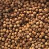 印度进口香菜籽产地货源直供 Coriander Seeds