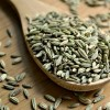印度茴香籽期货供应 Fennel Seeds