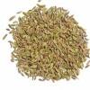 印度进口茴香籽供应商 Fennel Seeds