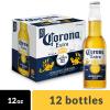 墨西哥进口科罗娜啤酒期货货源 Corona Beer
