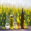 俄罗斯非转基因油菜籽油供应商 Rapeseed Oil