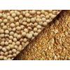 坦桑尼亚非转基因大豆期货行情 Soybeans