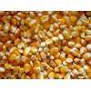 俄罗斯玉米期货行情 Corn