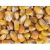 俄罗斯进口玉米到岸价 Corn