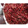 印度S15/S17干辣椒原产地直供 Dry Chilli